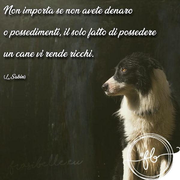 frasi belle per cani morti