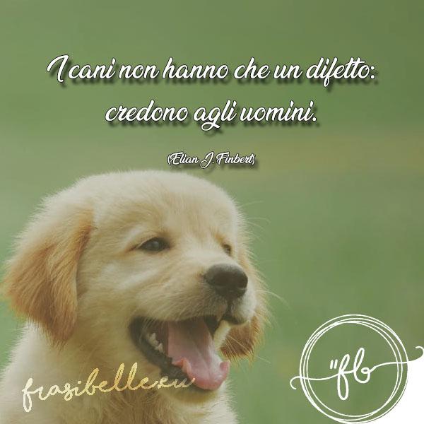 frasi sui cani belle tumblr