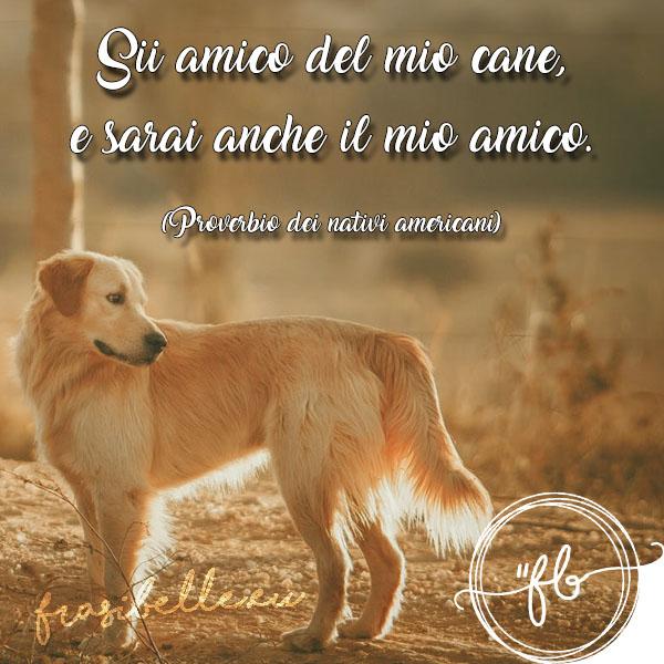 frasi belle da dedicare ai cani