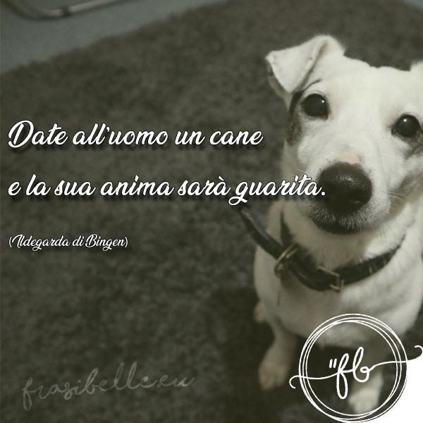 frasi per il proprio cane