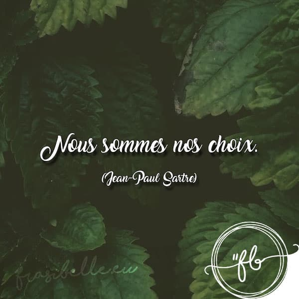 frasi baudelaire in francese