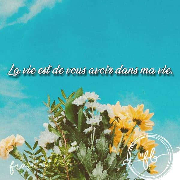 immagini di buongiorno in francese