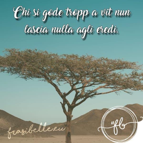 Frasi napoletane belle: la raccolta completa delle citazioni sulla vita, l'amicizia e l'amore 6